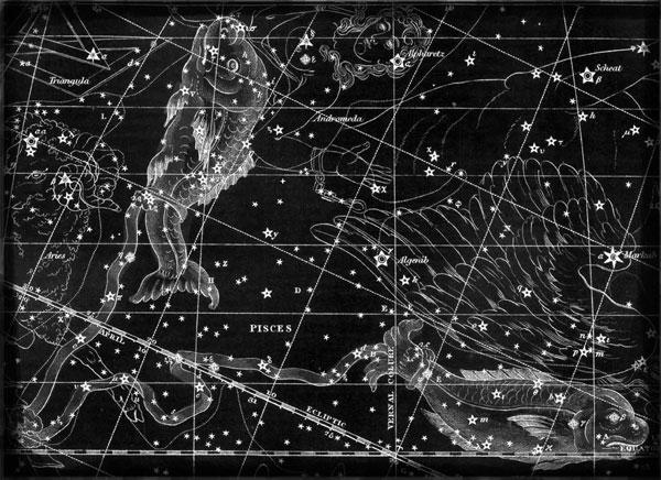 Constellation Pisces, classical image.
